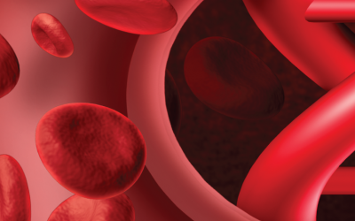 Detecting BRAF (V600E) Mutation in FFPE or Blood Samples